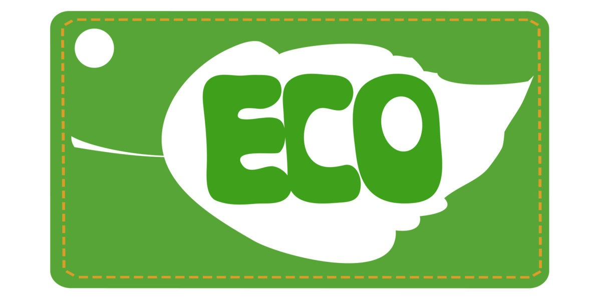 Go Greener in your Everyday Life