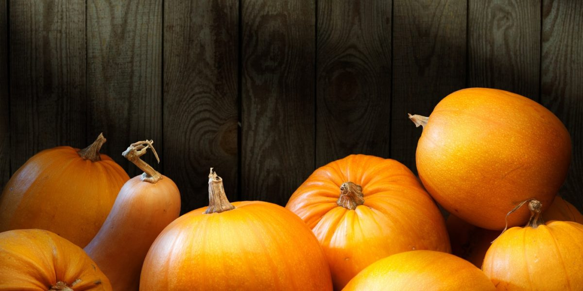 Delicious Organic Pumpkin Recipes
